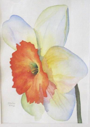 44 best Watercolor Flowers Daffodils images on Pinterest