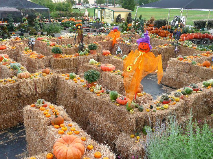 25+ best ideas about Fall festivals on Pinterest | Fall games ...