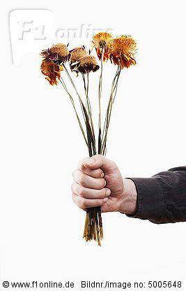 hand offering bunch of dead flowers copy