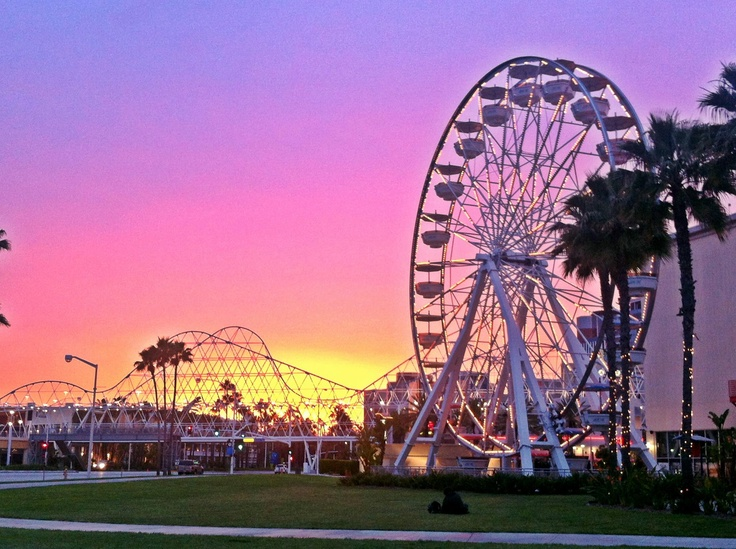 Downtown Long Beach Ca Pretty Someday Travel Pinterest And Winter Scenery