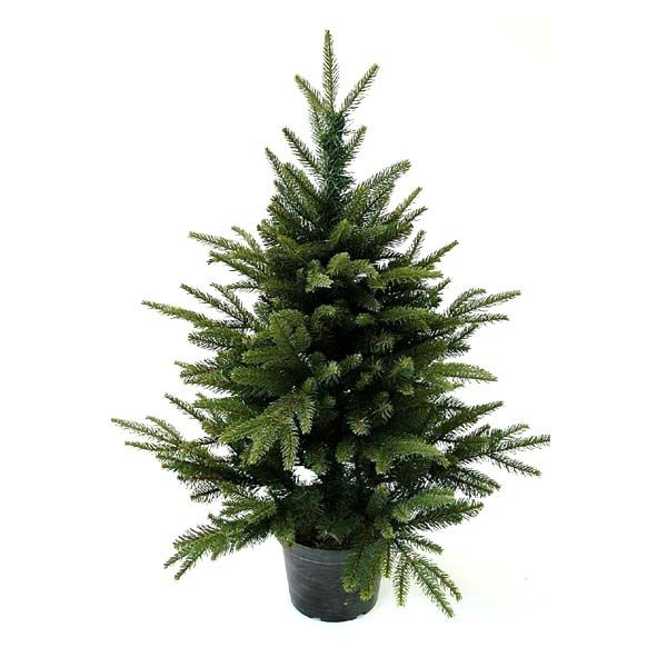 Delightful 3ft In Pot English Pine PE Artificial Christmas Tree