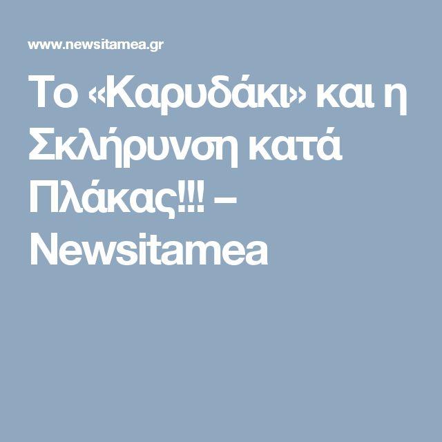 Το «Καρυδάκι» και η Σκλήρυνση κατά Πλάκας!!! – Newsitamea