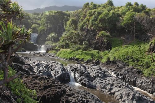 7 Sacred Pools of Hana... Maui, Hawaii: Hawaii Travel, Beloved Travel, Sacred Pools, Mango Bread, Pools Maui, Travel Spots, Places, Random Points, Maui Hawaii