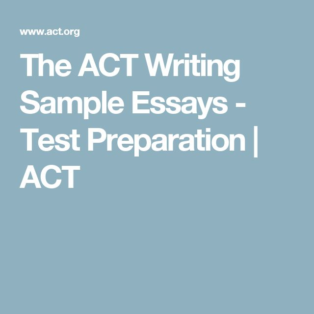 Act Sample Essays Rhetorical Essay Rhetorical Devices Essay Examples  Best Act Sample Test Ideas Small Business Plan The Act Writing Sample Essays  Test Preparation Act