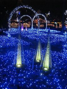 """Nabana-no-Sato literally means """"the village of field mustard"""", but it is a spacious garden with a lot of different flowers. However, it's nationally famous speciality is not flowers, but Christmas lights. The event starts in early November and ends in mid March every year. The number of LED bulbs used is the even the largest of Japan and it is still on the rise. This year, they announced they used 5.8 million bulbs to illuminate their garden."""