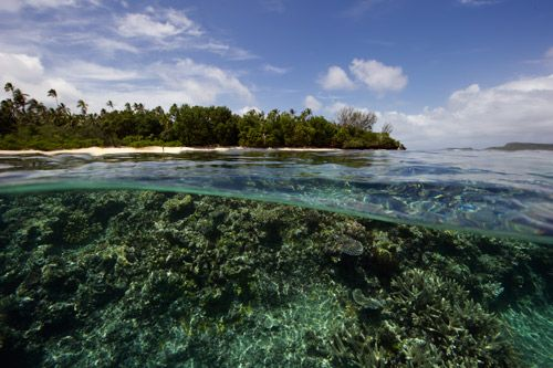 Reef Resort Vava'u