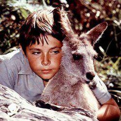 Skippy the Bush Kangaroo ... Australia's first home grown TV series to succeed overseas.