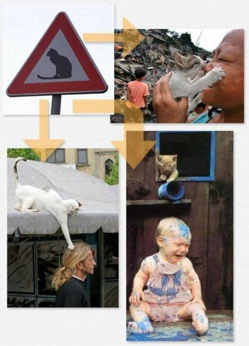 Странные дорожные знаки и их расшифровка (14 фотографий) - JokesLand - Самый лучший юмор сети