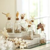 Found it at Birch Lane - 6 Piece Classic Glassware Seashell Decorative Bottle Set ($15)