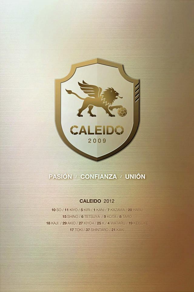 CALEIDO 2012