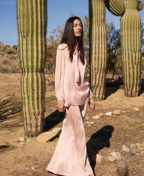Cacti safari #atpatelier #atpateliertravels #cacti