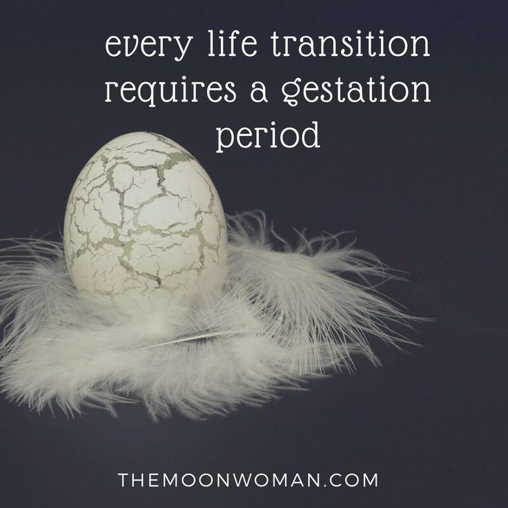 Did you know that when we shift from one life chapter to the next we often go through a transition period where we don't feel as social & may experience self-doubt and darker thoughts & feelings?  This is perfectly natural and part of the process as one aspect of our life comes to an end, ushering in a shift in identity, values & priorities.  Our body wisdom reflects this with changes in our lunar cycle.  Visit the website to find out more.