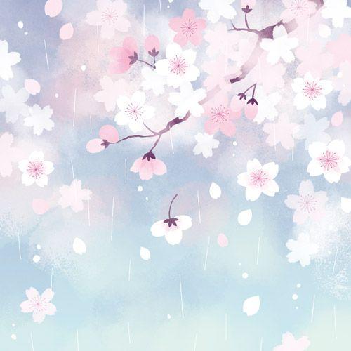 桜雨 春の夜