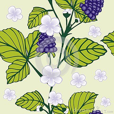 Beautiful tropical seamless pattern of blueberry vector pattern