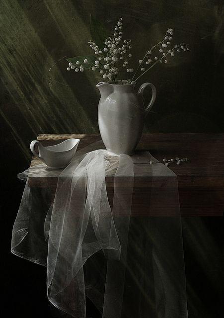 Солнечный   Flickr - Photo Sharing!