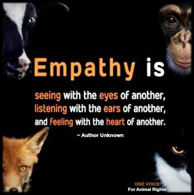 If you can't feel or put yourself in a victims point of view, you have no empathy or compassion for others . Plain and simple. We can't possibly care for others if we don't bother to make connections or try to relate with them.