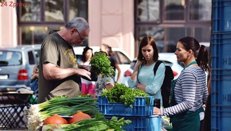 Pražané si nemohli odnést nákup v igelitce. Farmářské trhy »bez plastu« odstartovaly sezónu