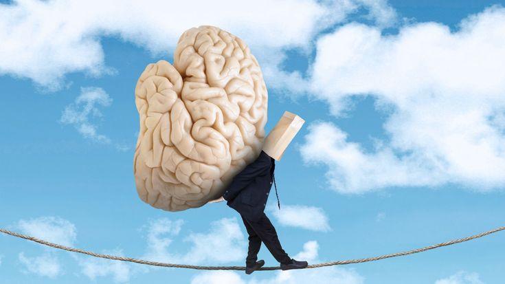 Großes Hirn, große Ideen.Falsch!Männer haben im Durchschnitt ein größeres Gehirn als Frauen. Das heißt allerdings nicht, dass sie deswegen intelligenter sind - die Größe sagt nämlich nichts über die Leistungsfähigkeit aus. Der Pottwal beispielsweise hat mit neun Kilogramm ein sechsmal größeres Gehirn als der Mensch, und liegt damit an erster Stelle. Das menschliche Hirn wiegt durchschnittlich 1.245 Gramm bei Frauen und 1.375 Gramm bei Männern. Diese Werte bleiben zwischen dem 20. und 50…