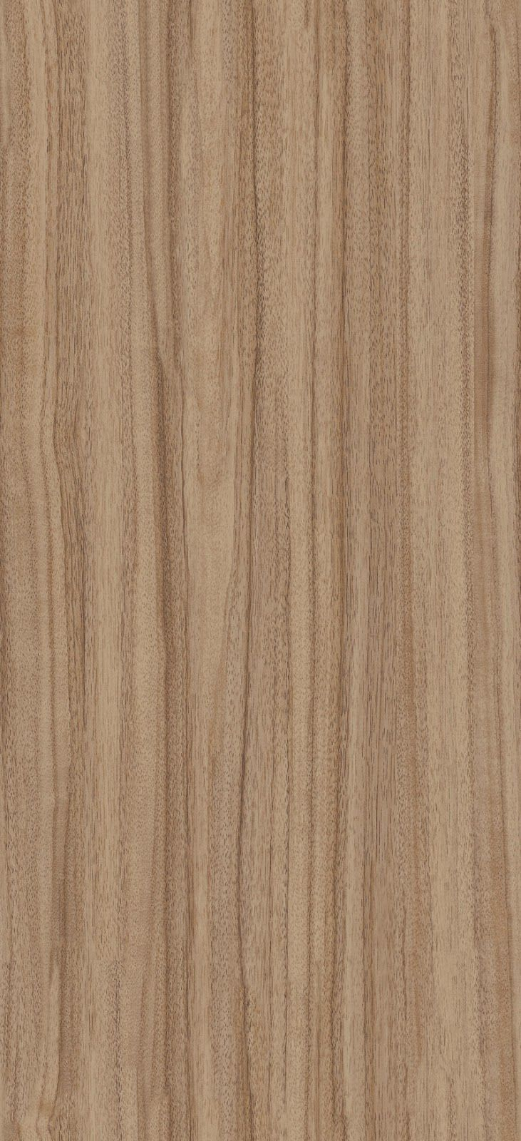 Seamless French Walnut Wood Texture texturise