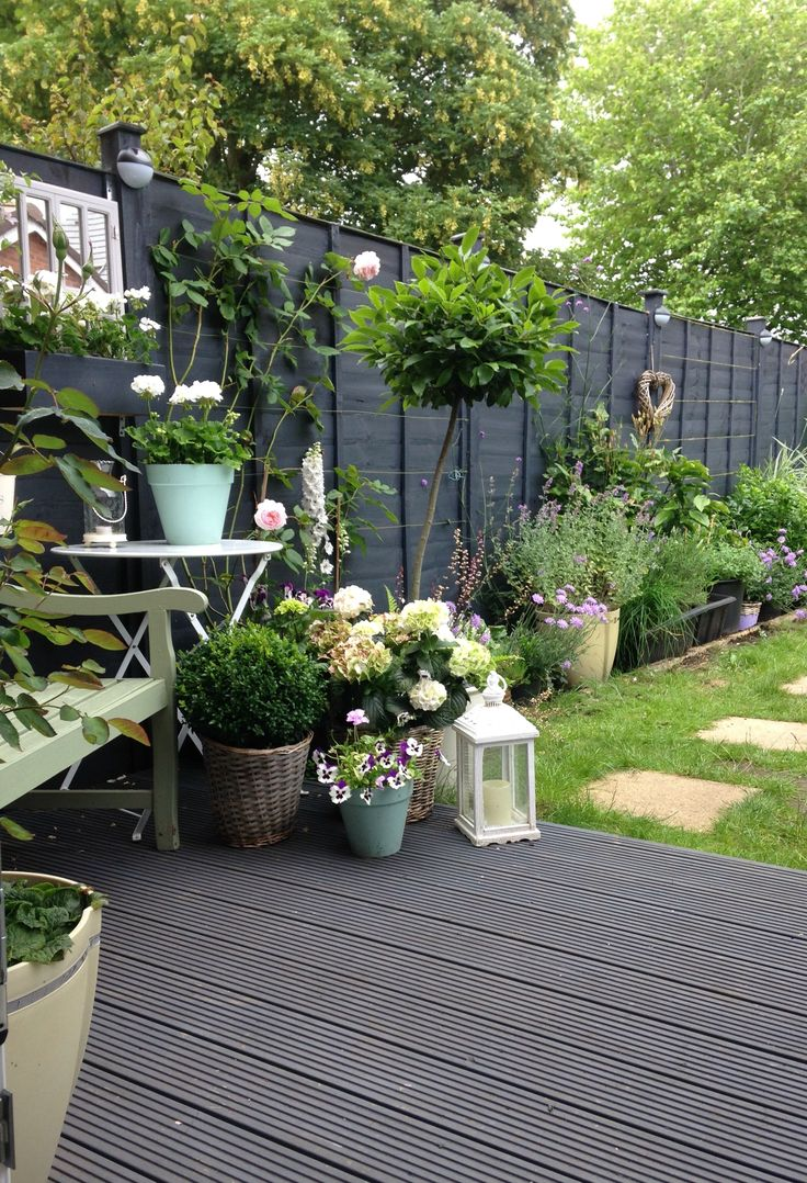 1578 best container gardening ideas images on pinterest Garden wall color ideas