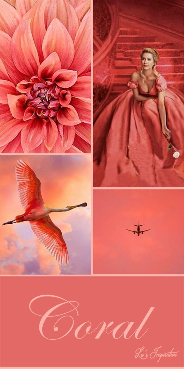 """Hi ladies.  Thank you for all the wonderful pins today.  Tonight and tomorrow let's pin this color board of """" CORAL """"  thank you and happy pinning ❤"""