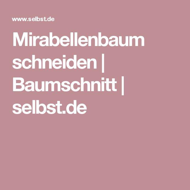 Mirabellenbaum schneiden | Baumschnitt | selbst.de