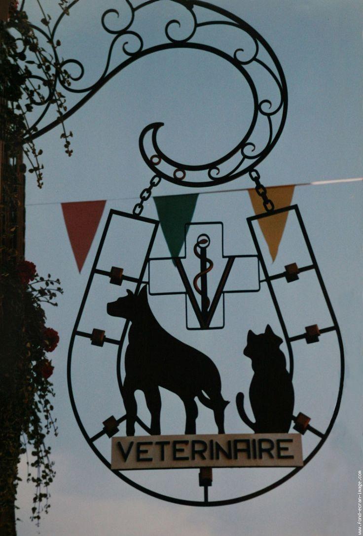 Vétérinaire, Rouffach, Alsace, France