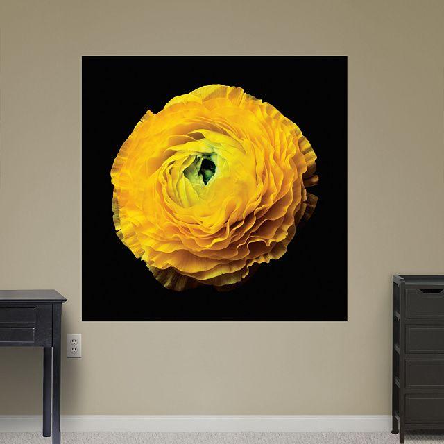 19 best Christopher Beane images on Pinterest | Flower photography ...