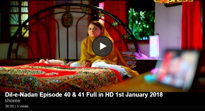 Dil-e-Nadan Episode 40 & 41 in HD | Pakistani Tv Dramas Online