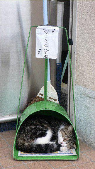 good sleeping spot