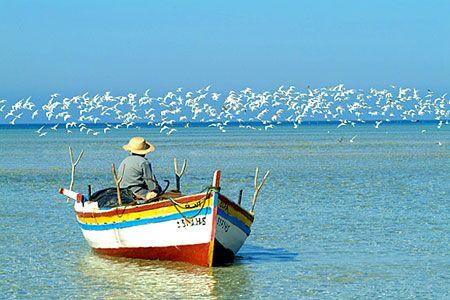 La Isla de Djerba