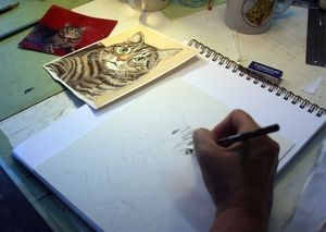Drawing a Cat in Colored Pencil - setting up to draw - using a reference photograph and image to guide your drawing process