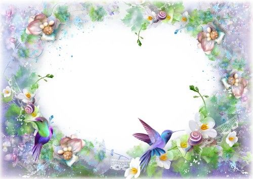 PSD Frame Blue Rose Free flower photo frame Photoshop template