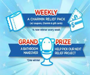 Bathroom Makeover Sweepstakes best 20+ free sweepstakes ideas on pinterest | free kids stuff