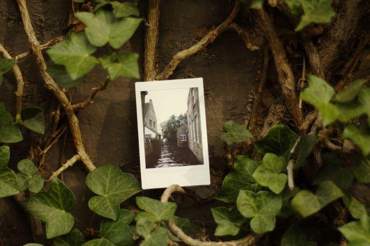 Les Petits Polas | Belgique, Brugges