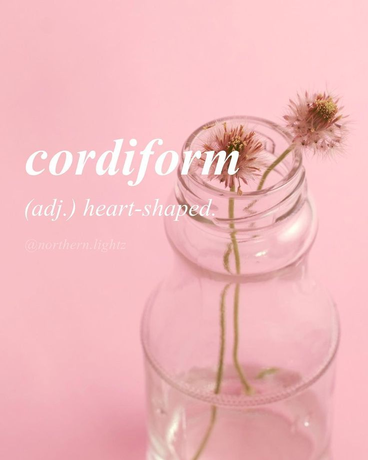 kor-di-form English with Latin origin  I hope everyone had a good Valentine's Day weekend!