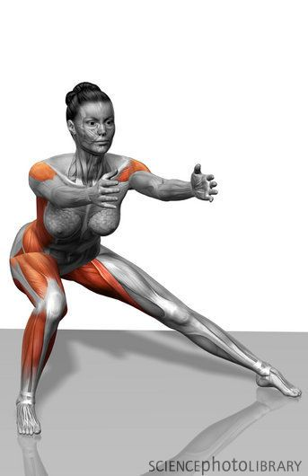 Inner and outer thigh is my absolute WORST area. I need to do more of these lateral lunges.