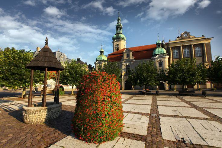 Puls Twojego miasta w rytmie natury - Inspirowani Naturą | kwietniki terra | standing flower towers