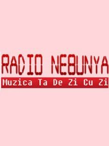 http://www.manele-radio.ro/index.php/albums/radio-nebunya/
