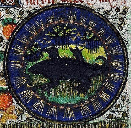 Hoy en tu #tarotgitano Horóscopo de hoy jueves 20 de octubre de 2016 para escorpio descubrelo en https://tarotgitano.org/escorpio-jueves-20-de-octubre-de-2016/ y el mejor #horoscopo y #tarot cada día llámanos al #931222722