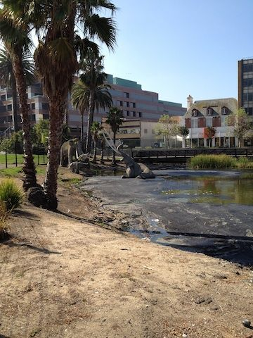 La Brea Tar Pits - in downtown L.A., fascinating location where hundreds of saber tooth tigers, mammoths were trapped and fossilized in tar pits that are still bubbling on the grounds of the museum.