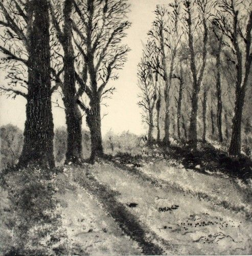 Aidan Flanagan: Winter Walk, carborundum, drypoint,  €300