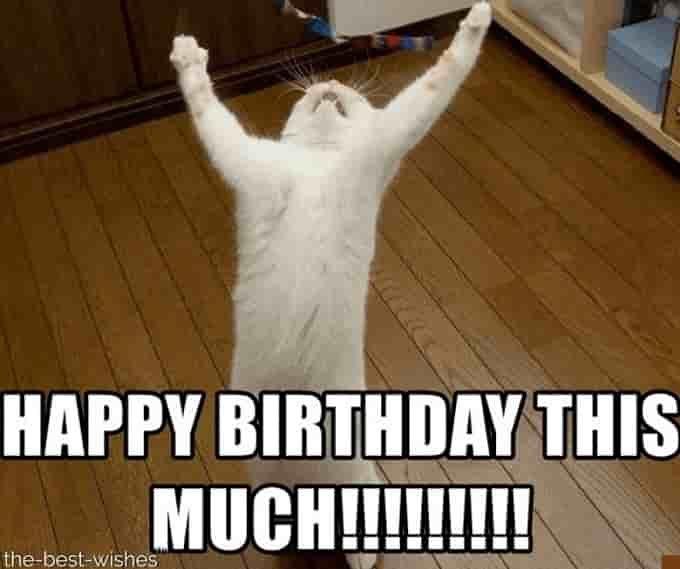 Top 100 Funniest Happy Birthday Memes (Most Popular