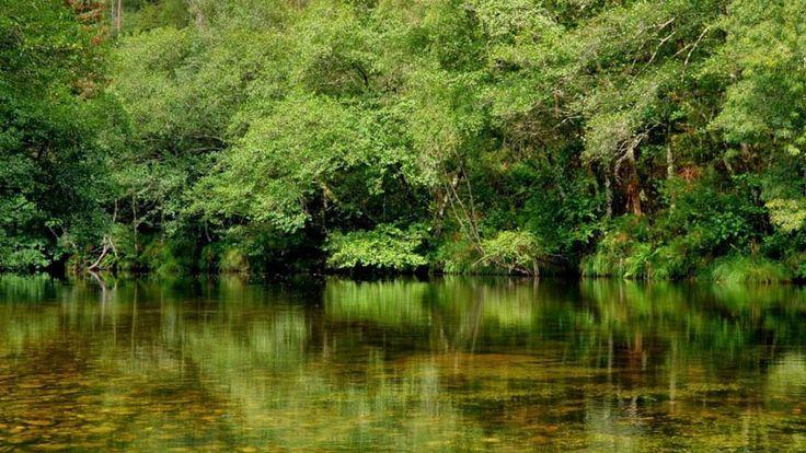 05 ponte caldelas rio verdugo