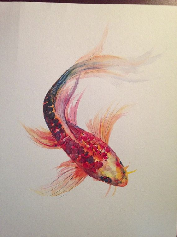 Watercolor Painting Koi Fish 9 x 12 Original by LaurenHellerArt, $50.00