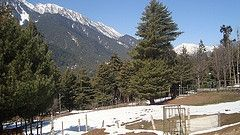 JKTDC Hotel Tourist Establishment Sanasar - Sanasar /Jammu & Kashmir