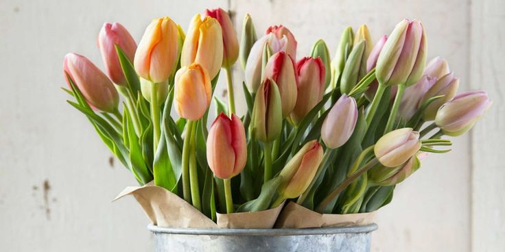 The Nifty Trick That Will Keep Your Tulips Upright