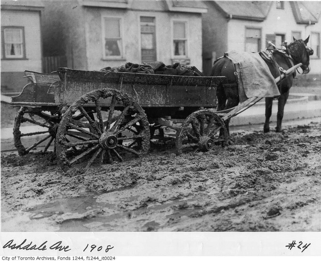 Canada. Coal wagon stalled on muddy Ashdale Avenue, Toronto, 1908