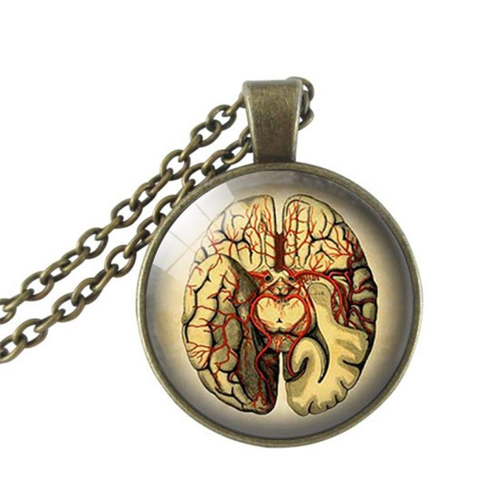 Pretty Bewitching is pleased to announce the launch of three new collections! This necklace, The Brain, is part of our Body Works Collection  www.prettybewitching.com  #fashionblogger #fashionjewelry #fashionistastyle #fashionista #jewellery #jewelry #necklace #necklaces #pretty #bewitching #prettybewitching #unique #worldwideshipping #worldwide #canada #us #uk #unitedstatesofamerica #unitedstates #unitedkingdom #australia #biology #science  #scientist #anatomy #GreysAnatomy #doctor…