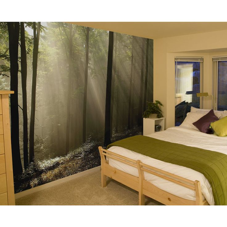 Items Similar To JP London UStrip Morning Rays Mystic Forest Wall Mural  Peel And Stick And Removable Paper At Ft High By Ft Wide On Etsy Part 45